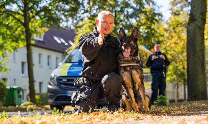 Diensthundstaffel BRANDENBURG Polizei Fährtenspürhundführer K-9 DHF mit Klett